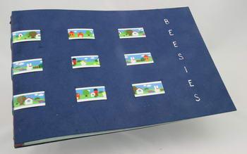 Tijn's boek Beesies