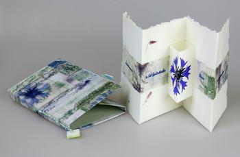 Korenbloem II (achterkant)